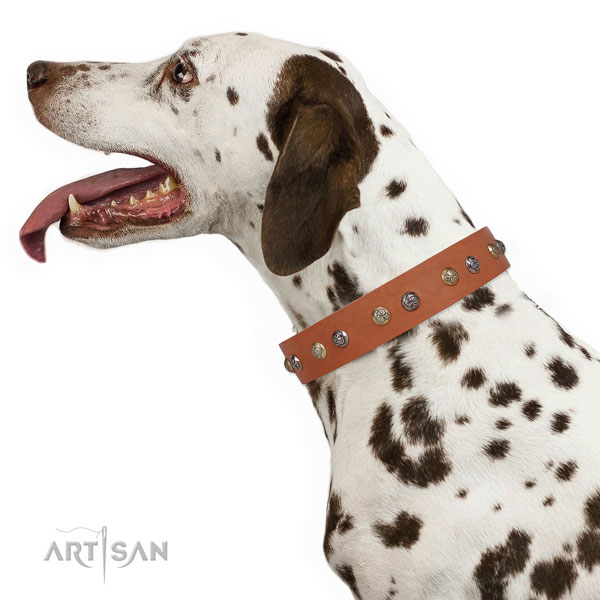 Leather dog collar with durable buckle and D-ring for everyday walking