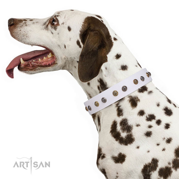 Handy use adorned dog collar made of top rate genuine leather