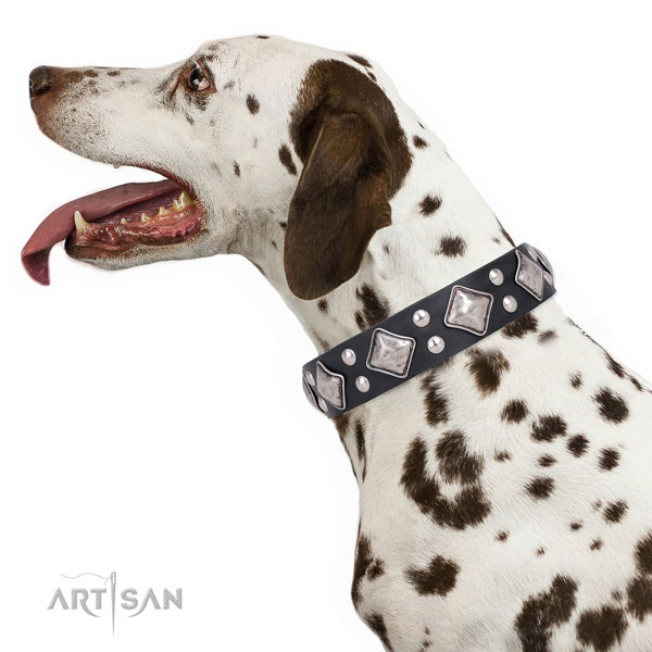Stylish walking studded dog collar made of strong leather
