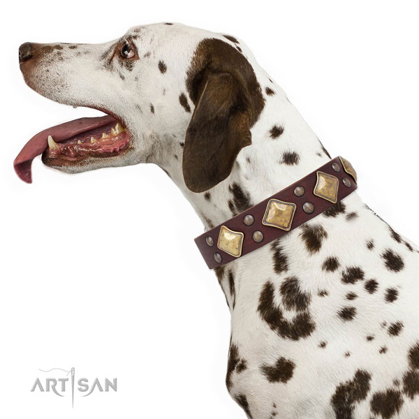 Easy wearing embellished dog collar made of best quality leather