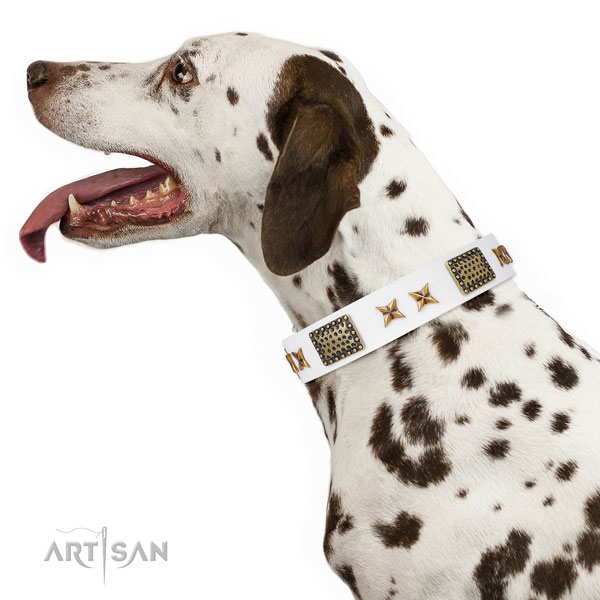 Fashionable studs on easy wearing full grain leather dog collar