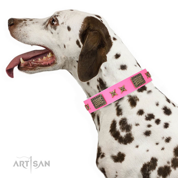 Inimitable adornments on easy wearing full grain leather dog collar