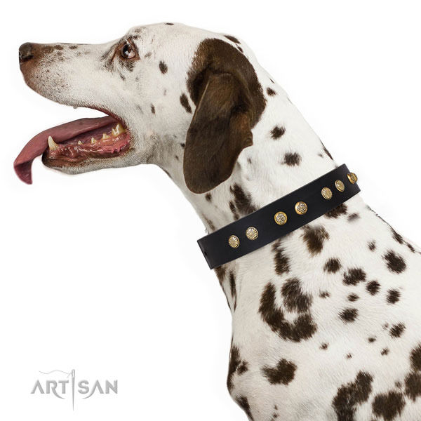 Stylish design adornments on easy wearing full grain natural leather dog collar
