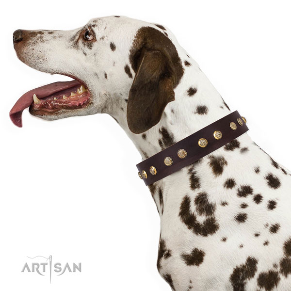 Extraordinary decorations on comfortable wearing genuine leather dog collar