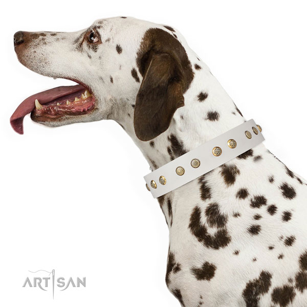 Incredible embellishments on everyday use full grain leather dog collar