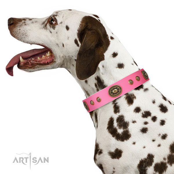 Awesome embellishments on comfy wearing dog collar
