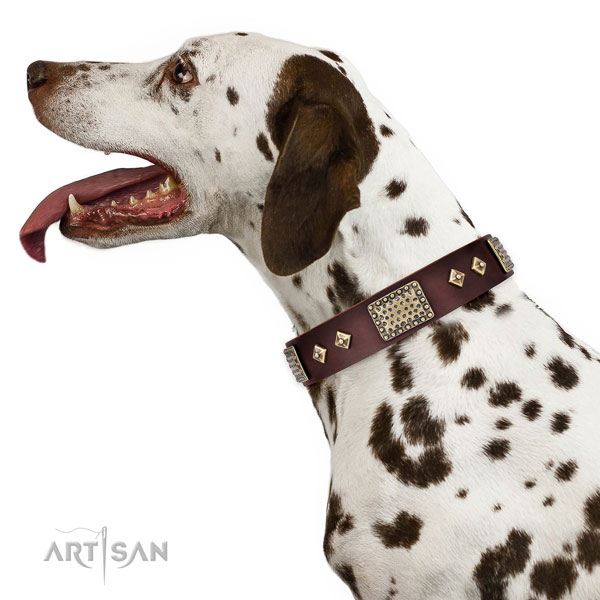 Best quality fancy walking dog collar of natural leather