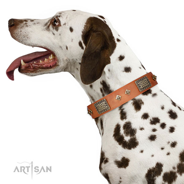 Basic training dog collar of genuine leather with exquisite decorations