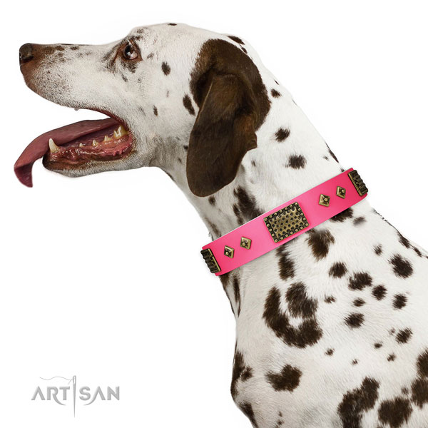 Studded natural genuine leather collar for your handsome canine