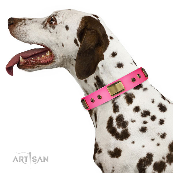 Easy wearing dog collar of genuine leather with amazing studs