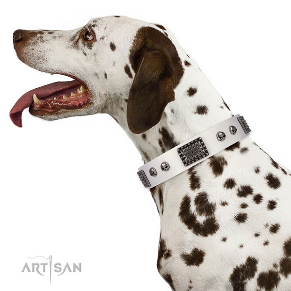 Amazing full grain natural leather collar for your beautiful four-legged friend