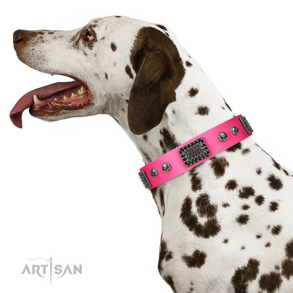 Stylish genuine leather collar for your stylish pet