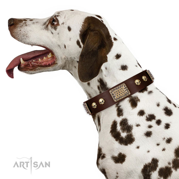 Rust-proof D-ring on full grain genuine leather dog collar for everyday use