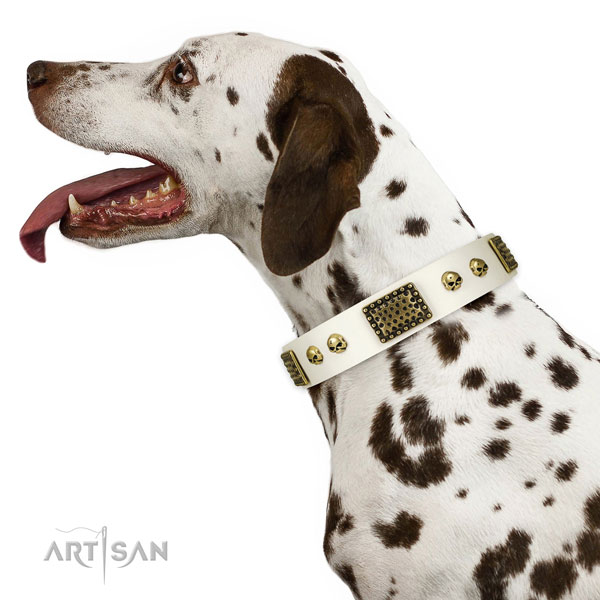 Rust resistant fittings on genuine leather dog collar for everyday use