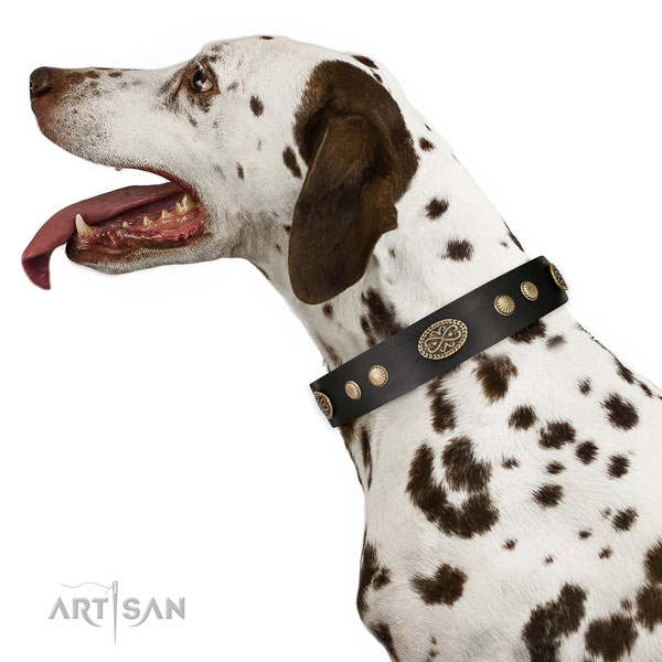 Corrosion resistant buckle on natural leather dog collar for everyday use