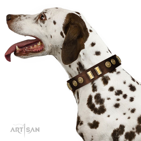 Corrosion proof traditional buckle on leather dog collar for comfortable wearing
