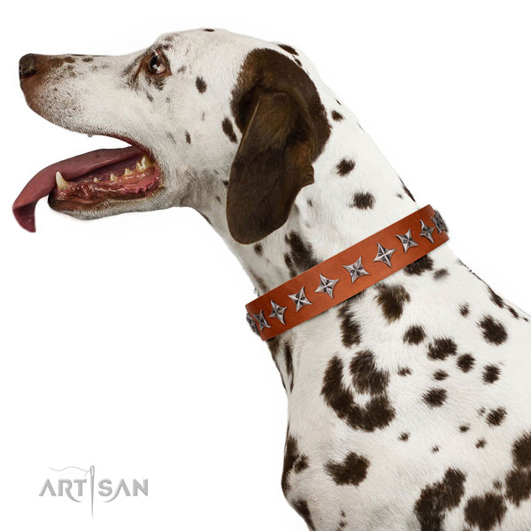 High quality full grain genuine leather dog collar with significant decorations