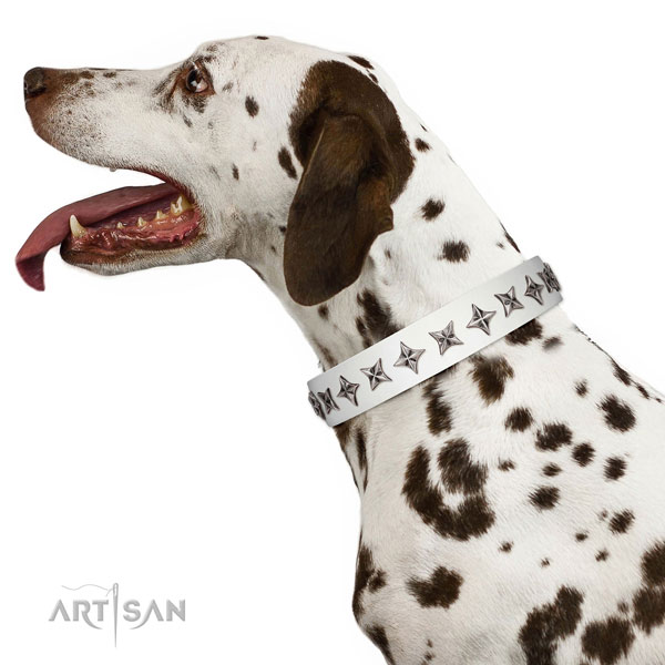 Strong leather dog collar with top notch decorations