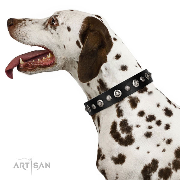 Durable natural leather dog collar with stunning decorations