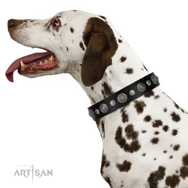 Natural leather collar with corrosion resistant buckle for your handsome pet