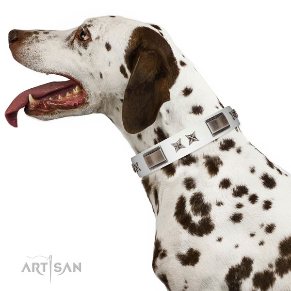 Decorated collar of full grain genuine leather for your stylish four-legged friend