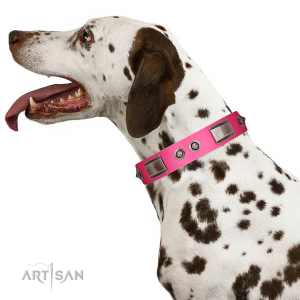 Trendy full grain genuine leather dog collar with adornments