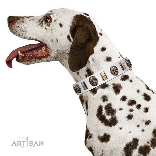 Natural leather dog collar with stylish decorations