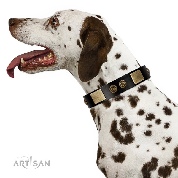 Strong D-ring on genuine leather dog collar for comfy wearing