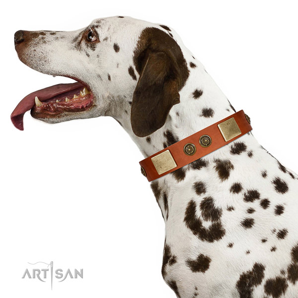 Exquisite dog collar made for your beautiful dog