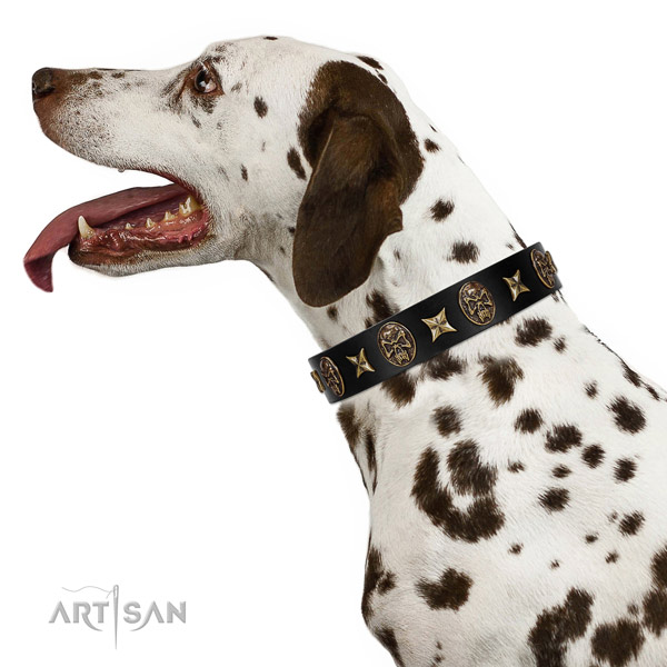 Everyday use dog collar of genuine leather with unique decorations