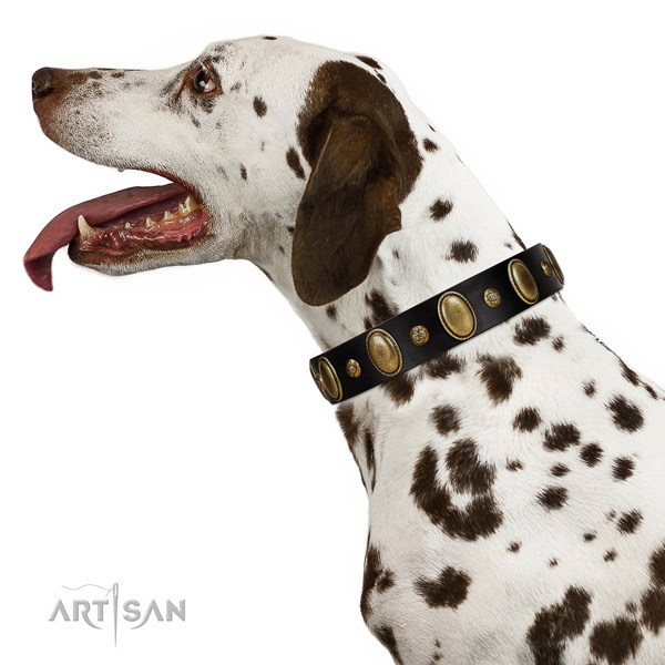 Genuine leather dog collar of gentle to touch material with fashionable decorations