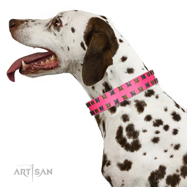 Gentle to touch full grain leather dog collar with adornments for your dog