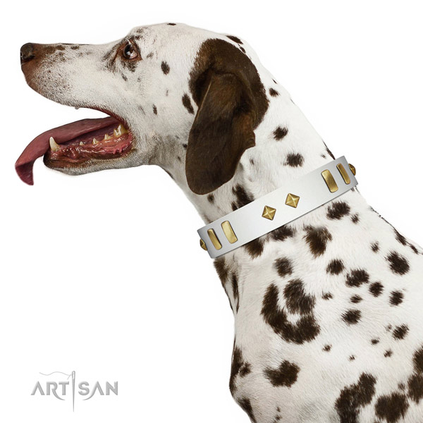 Stylish walking soft full grain natural leather dog collar with adornments