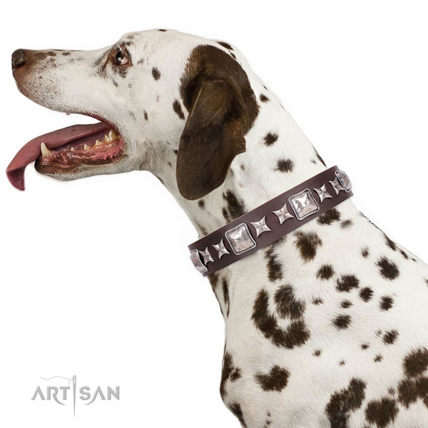 Dalmatian full grain genuine leather dog collar for comfy wearing