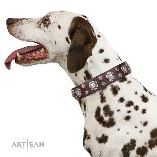 Dalmatian natural genuine leather dog collar for fancy walking