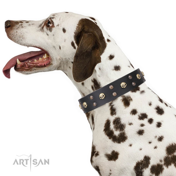 Dalmatian full grain leather dog collar for comfy wearing