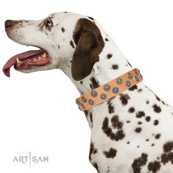 Dalmatian natural genuine leather dog collar for handy use