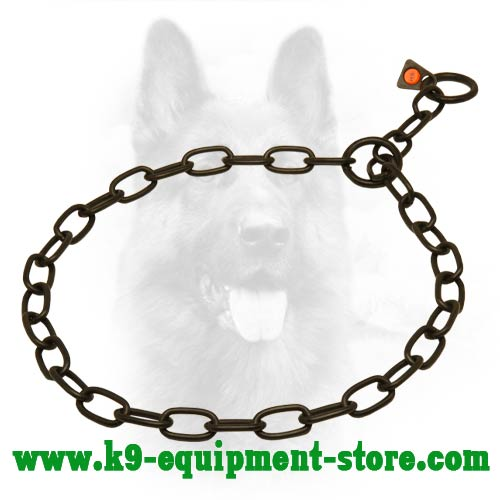 Black Stainless Steel Canine Choke Collar for Obedience Training
