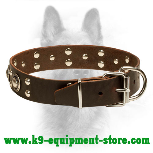 Leather Dog Collar K9 Riveted