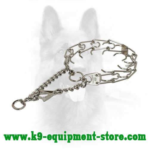 Chrome Plated Canine Pinch Collar Steel with Prongs