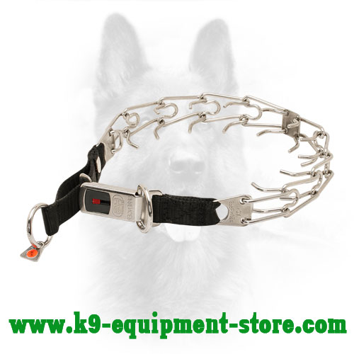 Stainless Steel Canine Dog Pinch Collar with Lock Buckle