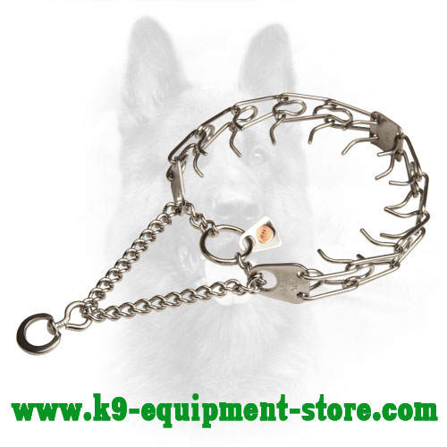 Canine Prong Collar Stainless Steel with Removable Links