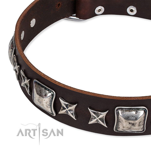 Natural genuine leather dog collar with studs for walking