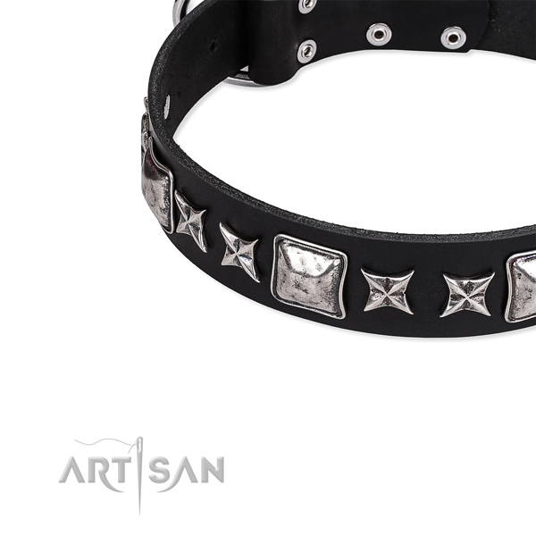 Full grain natural leather dog collar with stunning studs