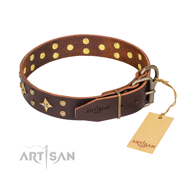 Daily use full grain leather collar with decorations for your four-legged friend