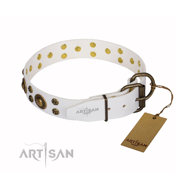 Top notch full grain leather dog collar for everyday walking