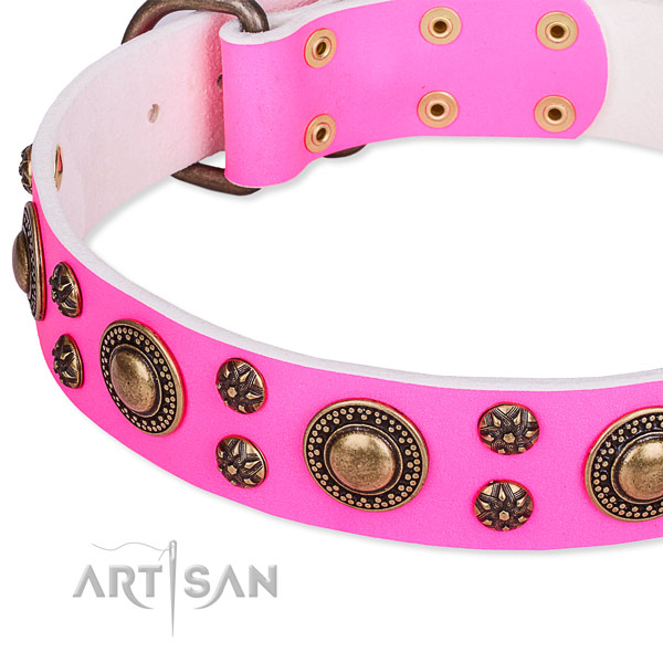 Natural genuine leather dog collar with unusual embellishments