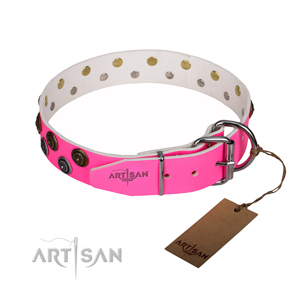 Daily use full grain genuine leather collar with studs for your four-legged friend