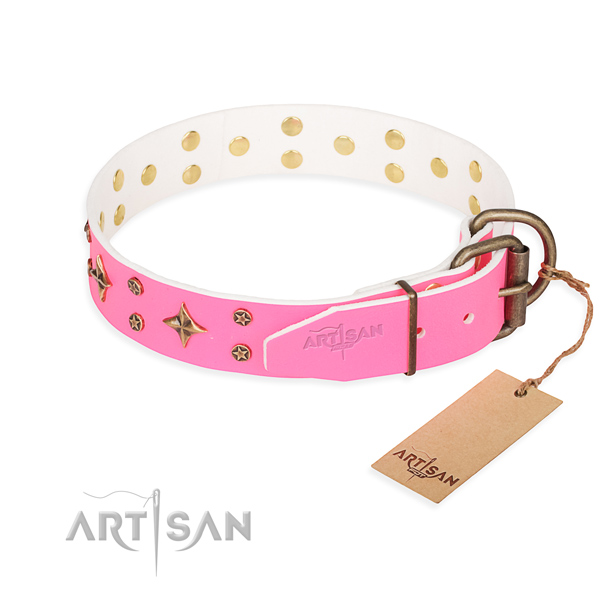 Walking leather collar with studs for your dog