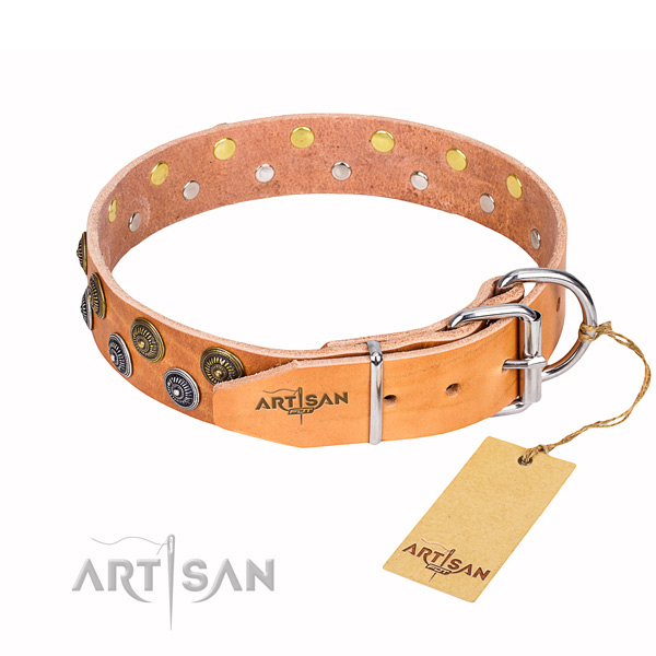Daily walking full grain natural leather collar with studs for your dog